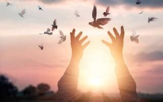 Твір на тему «Вміння прощати»
