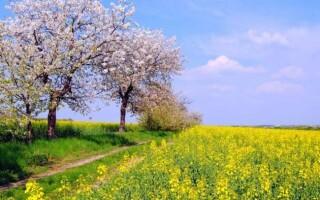 ✅21 травня: історія, свята, прикмети