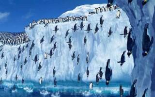 Чому Антарктида найвищий з материків на Землі