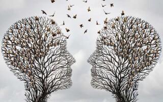 Твір на тему «Краса людських відносин»