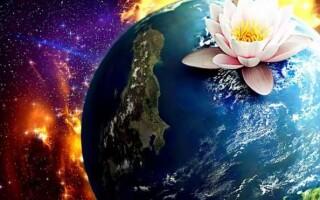 ✅Твір на тему «Краса врятує світ»