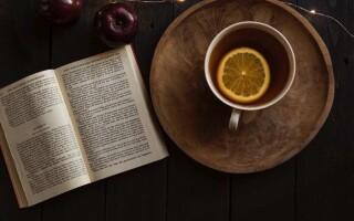 Чим відрізняється художня література від наукової літератури