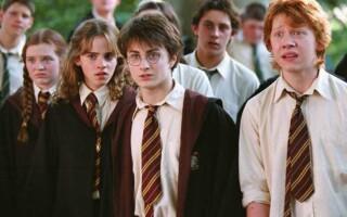 Твір «Моя улюблена книга – Гаррі Поттер»