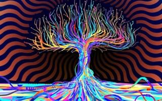✅Що таке психоделіка: відмінність від психоделії і психоделіків