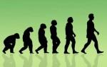 ✅Твір «Роль історії в житті людини»