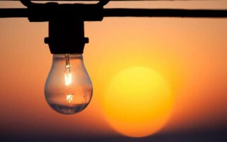 ✅Світло – роль світла в житті людини, рослин і тварин