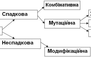 Схема класифікації видів мінливості
