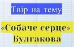 ✅Твір за повістю «Собаче серце» Булгакова