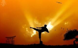 ✅Твір на тему «Сила духу»