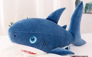 ✅Твір «Моя улюблена іграшка акула (м'яка іграшка)»
