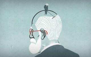 ✅Що таке відчуття в психології: види і властивості