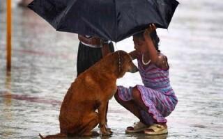 ✅Твір «Що таке Доброта»