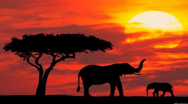 Африка - пейзаж