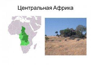 Країни Західної та Центральної Африки