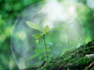 Охорона навколишнього середовища