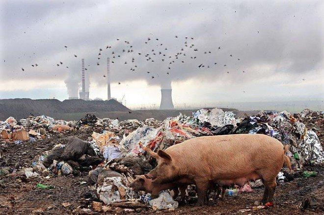 Рішення природоохоронних проблем