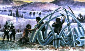 Розселення людини на материках