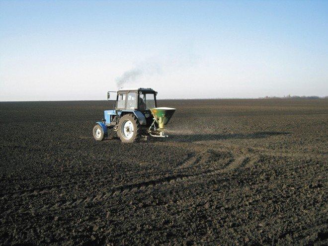 Підготовка насіння до сівби