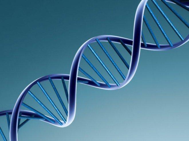 Набір ДНК