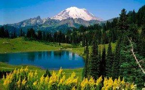 18711642_1203793023_Natural_Beauty_Mount_Rainier_National_Park_Washington
