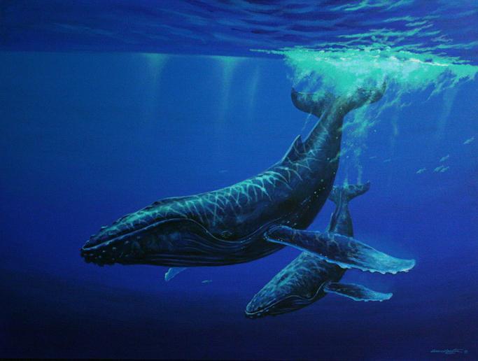 Тварини Тихого океану - Горбатий Кит