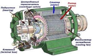 Трифазний асинхронний двигун з короткозамкненим ротором
